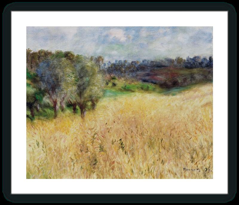 zoom Campo de trigo