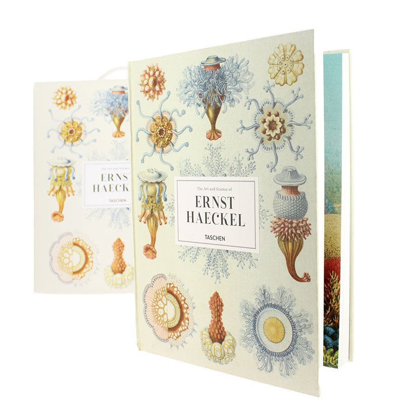 zoom The Art and Science of Ernst Haeckel XL