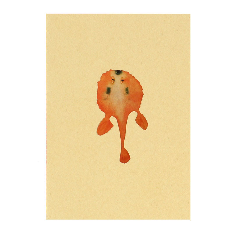 zoom Libreta pez naranja Joan Jonas