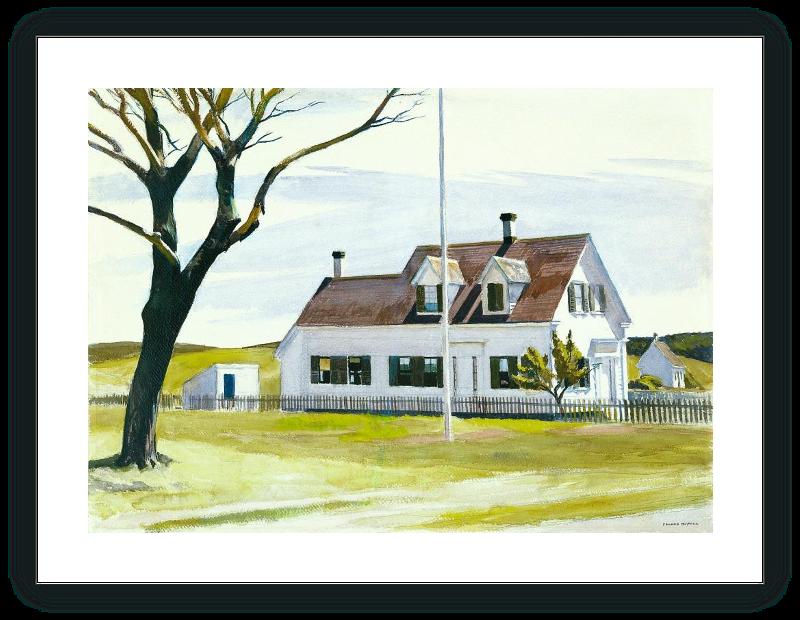 Arbol seco y vista lateral de la Casa