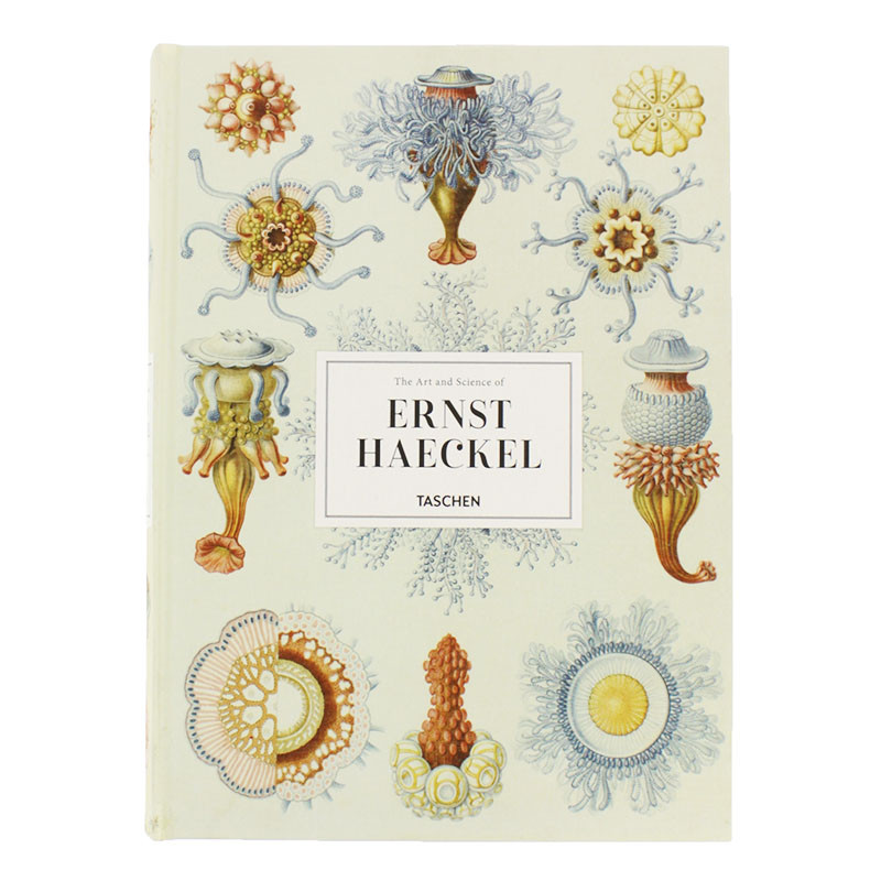 The Art and Science of Ernst Haeckel XL