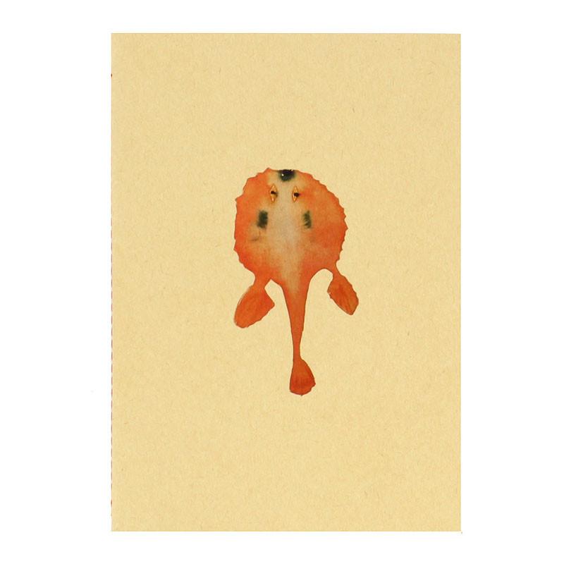 Libreta pez naranja Joan Jonas