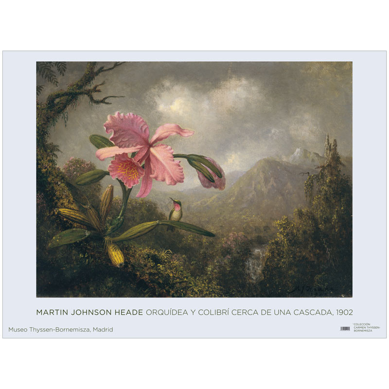 Póster Martin Johnson Heade: Orquídea y Colibrí