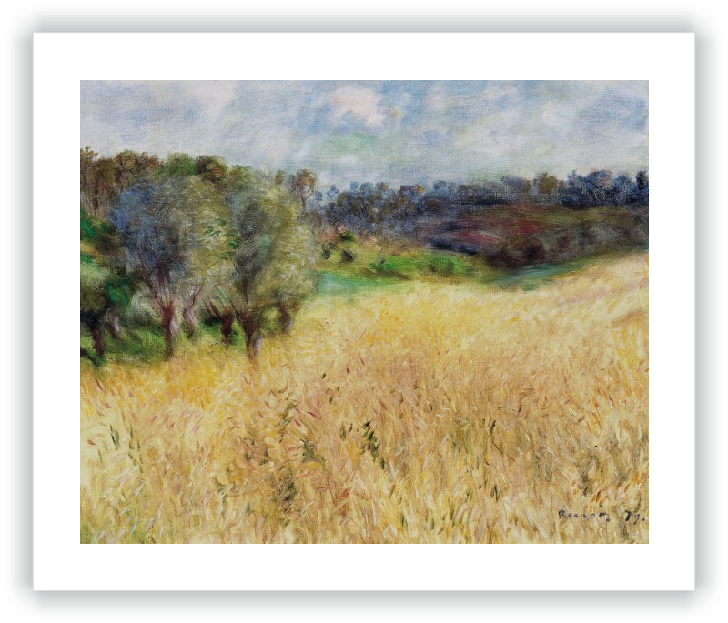 zoom Wheatfield