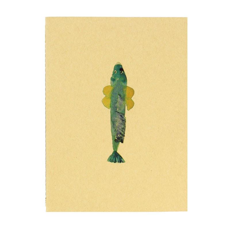 zoom Green Fish Notebook. Joan Jonas