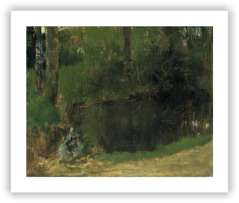 The Pond in the Forest