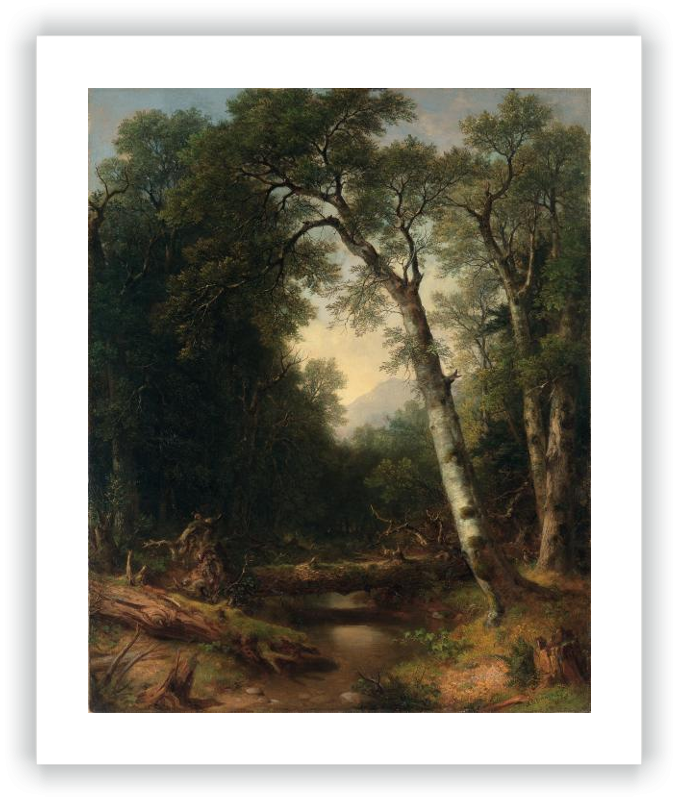 A Creek in the Woods