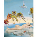small Poster Salvador Dalí: Dream caused by the Flight of a Bee around a Pomegranate a Second before Waking up 0